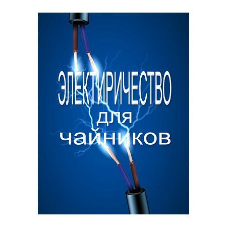 Книга Электричество для чайников